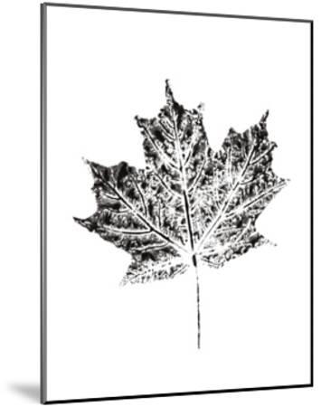 Harvest Sentiments I BW no Words--Mounted Art Print