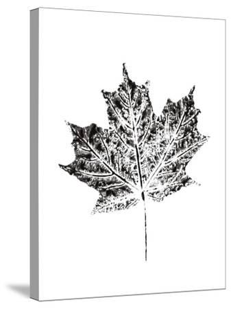 Harvest Sentiments I BW no Words--Stretched Canvas Print