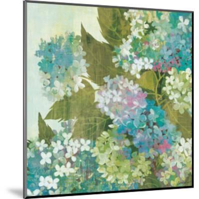 Grandiflora Bloom--Mounted Art Print