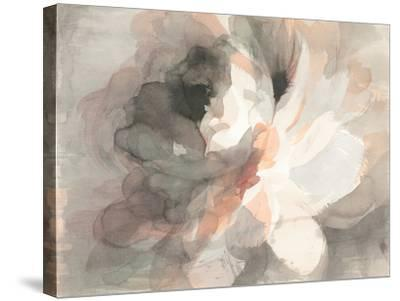 Abstract Peony--Stretched Canvas Print