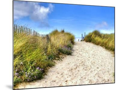 Path in the Dunes Going to the Seaside-Chantal de Bruijne-Mounted Photographic Print
