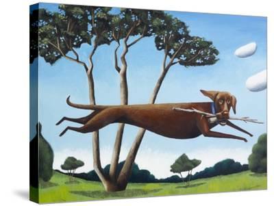 Dinah in Glen Ellen-Mark Ulriksen-Stretched Canvas Print
