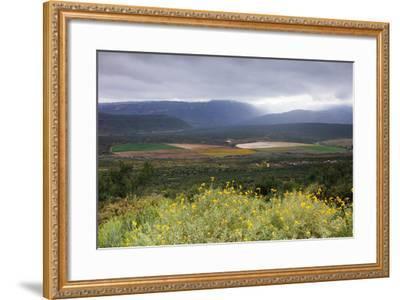 Crop circles, Cederberg Wilderness Area, Western Cape, South Africa, Africa-Christian Kober-Framed Photographic Print