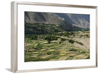 Wheat fields in the Panjshir Valley, Afghanistan, Asia-Alex Treadway-Framed Photographic Print