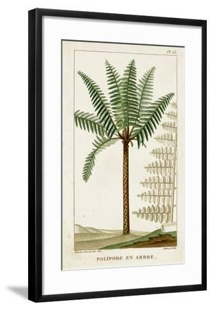 Turpin Exotic Palms III--Framed Art Print
