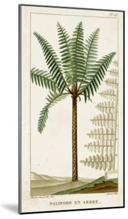 Turpin Exotic Palms III--Mounted Art Print