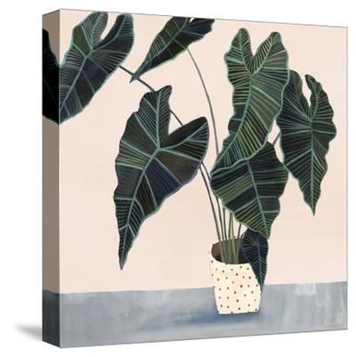 Houseplant II--Stretched Canvas Print