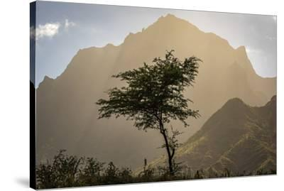 africa, Cape Verde, Santiago. View of the Pico da Antonia-Catherina Unger-Stretched Canvas Print