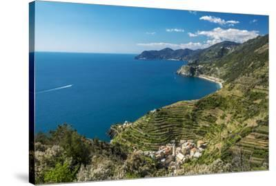 Europe, Italy, Liguria. View over Manarola, Cinque Terre.-Catherina Unger-Stretched Canvas Print
