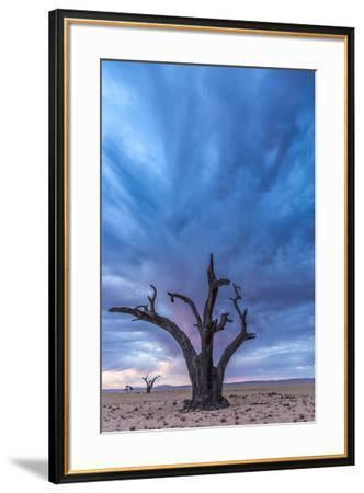 Africa, Namibia, Hardap region. A romantic sunset.-Catherina Unger-Framed Photographic Print