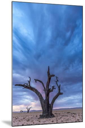 Africa, Namibia, Hardap region. A romantic sunset.-Catherina Unger-Mounted Photographic Print