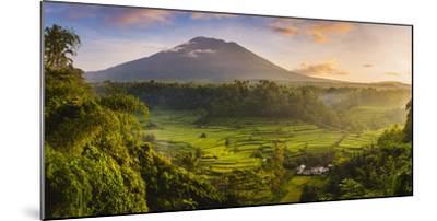 Sidemen valley, Rendang, Karangasem Regency, Bali, Indonesia. Paddy fields with Gunung Agung (Mt Ag-Marco Bottigelli-Mounted Photographic Print