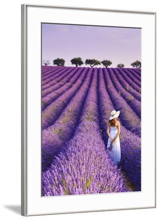 France, Provence Alps Cote d'Azur, Haute Provence, Plateau of Valensole, Lavander Fields-Michele Falzone-Framed Photographic Print