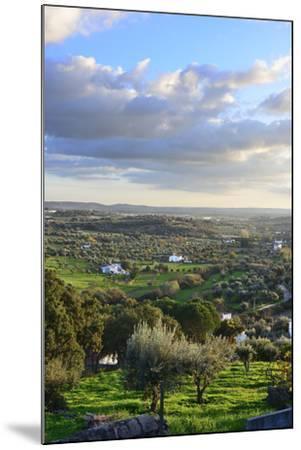 Farms in the vast plains of Alentejo, Portugal-Mauricio Abreu-Mounted Photographic Print