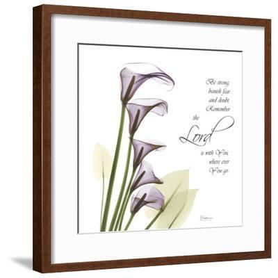 Calla Lilies Remember-Albert Koetsier-Framed Photographic Print
