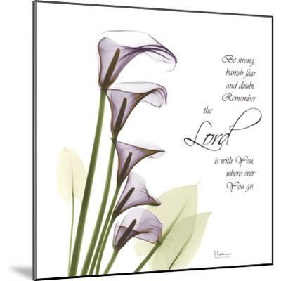 Calla Lilies Remember-Albert Koetsier-Mounted Photographic Print