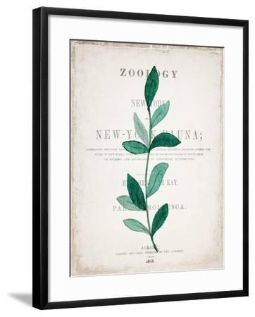 Botanical Pages 2-Kimberly Allen-Framed Art Print
