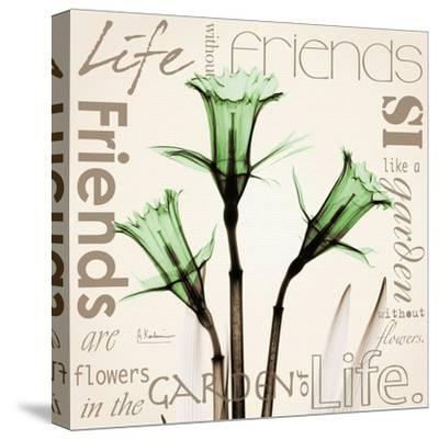 Daffodil Life-Albert Koetsier-Stretched Canvas Print