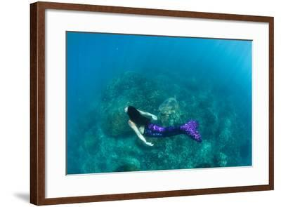 View of Mermaid Swimming in Ocean, Hawaii, USA--Framed Photographic Print