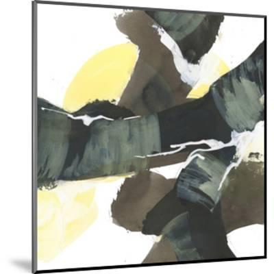 Banded 2-Chris Paschke-Mounted Art Print