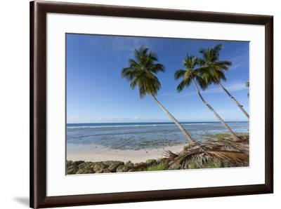 Hastings Beach, Christ Church, Barbados, West Indies, Caribbean, Central America-Frank Fell-Framed Photographic Print