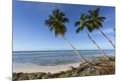 Hastings Beach, Christ Church, Barbados, West Indies, Caribbean, Central America-Frank Fell-Mounted Photographic Print