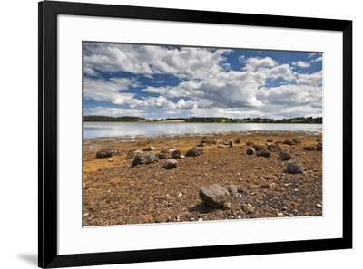 Reagh Island, Strangford Lough, County Down, Ulster, Northern Ireland, United Kingdom, Europe-Carsten Krieger-Framed Photographic Print
