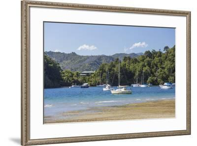 Yachts moored in the sheltered harbour, Ngakuta Bay, near Picton, Marlborough, South Island, New Ze-Ruth Tomlinson-Framed Photographic Print