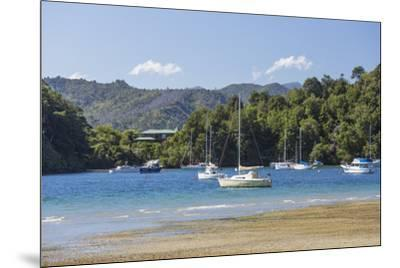 Yachts moored in the sheltered harbour, Ngakuta Bay, near Picton, Marlborough, South Island, New Ze-Ruth Tomlinson-Mounted Photographic Print