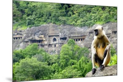 Grey langur monkey (Hanuman Langur) (Semnopithecus sp.) outside the Ajanta Caves, UNESCO World Heri-Alex Robinson-Mounted Photographic Print