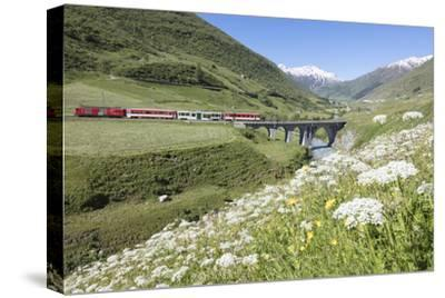 Typical red Swiss train on Hospental Viadukt surrounded by creek and blooming flowers, Andermatt, C-Roberto Moiola-Stretched Canvas Print