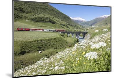 Typical red Swiss train on Hospental Viadukt surrounded by creek and blooming flowers, Andermatt, C-Roberto Moiola-Mounted Photographic Print