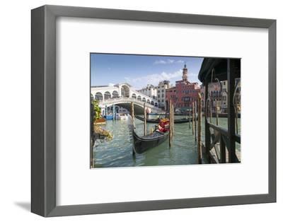 Rialto Bridge, Venice, UNESCO World Heritage Site, Veneto, Italy, Europe-Frank Fell-Framed Photographic Print