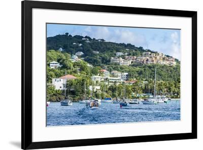 Sailing boats in Cruz Bay, St. John, Virgin Islands National Park, US Virgin Islands, West Indies,-Michael Runkel-Framed Photographic Print