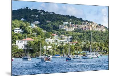 Sailing boats in Cruz Bay, St. John, Virgin Islands National Park, US Virgin Islands, West Indies,-Michael Runkel-Mounted Photographic Print