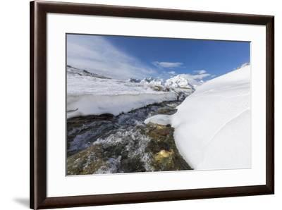 A creek in the snowy vallley with Monte Disgrazia in the background, Malenco Valley, Province of So-Roberto Moiola-Framed Photographic Print