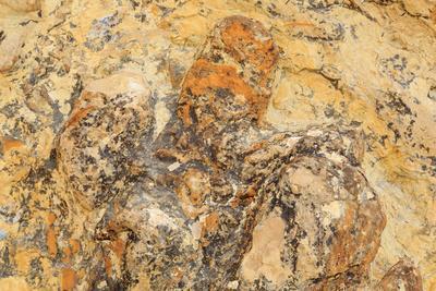 Parowan Gap Dinosaur Tracks and Remains, Iron County, Utah, United States of America, North America-Richard Cummins-Framed Photographic Print