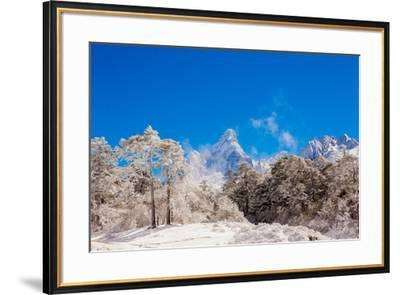 Peak of Mount Everest with snow covered forest, Himalayas, Nepal, Asia-Laura Grier-Framed Photographic Print