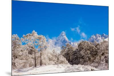 Peak of Mount Everest with snow covered forest, Himalayas, Nepal, Asia-Laura Grier-Mounted Photographic Print