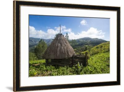 Traditional house in the mountains, Maubisse, East Timor, Southeast Asia, Asia-Michael Runkel-Framed Photographic Print