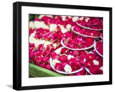Flowers for offering at a Hindu temple, New Delhi, India, Asia-Matthew Williams-Ellis-Framed Photographic Print