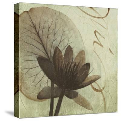 Verde Botanicals IV-Liz Jardine-Stretched Canvas Print