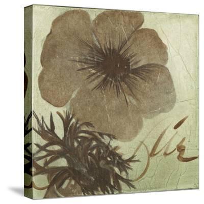 Verde Botanicals V-Liz Jardine-Stretched Canvas Print
