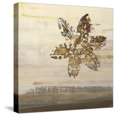 Florentine II-Simon Addyman-Stretched Canvas Print