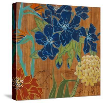 Primary Colors II-Liz Jardine-Stretched Canvas Print