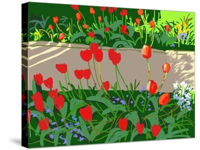 Tulips and Ladybirds, 2017-Andrew Macara-Stretched Canvas Print