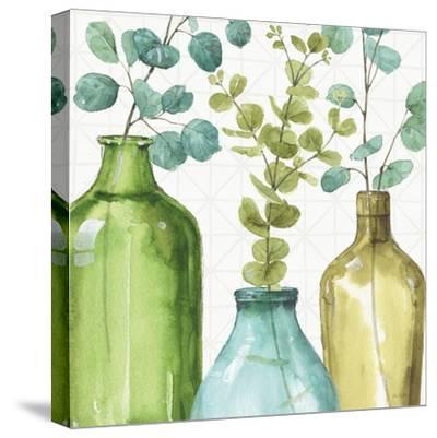 Mixed Greens LVI-Lisa Audit-Stretched Canvas Print