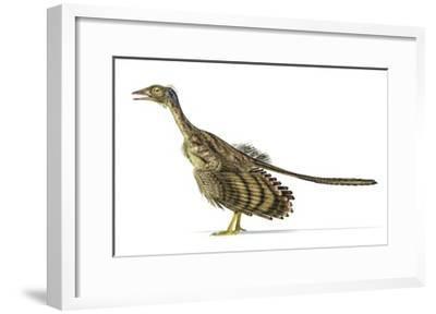 Archaeopteryx Dinosaur, Artwork--Framed Art Print