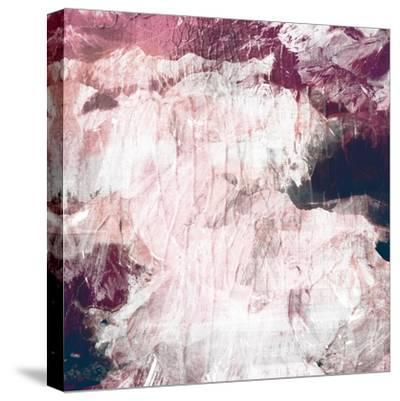 Abstract Roses-PI Studio-Stretched Canvas Print