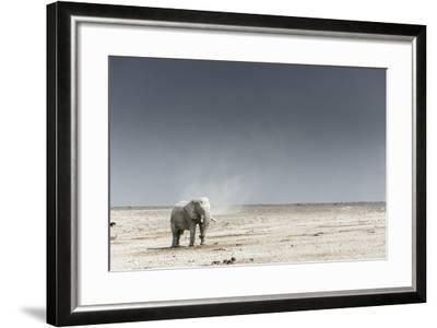 African Elephants, Loxodonta Africana, Standing with Dust Devil in the Background-Chris Schmid-Framed Photographic Print